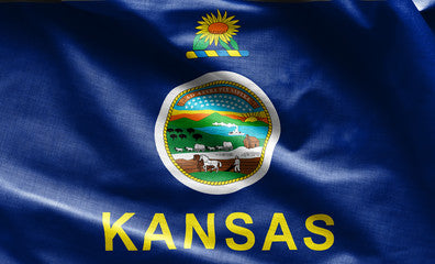 Kansas Registered Agent Service