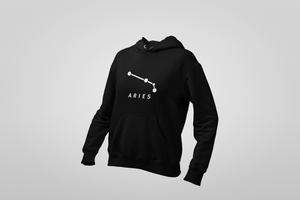 ARIES Hooded Sweatshirt