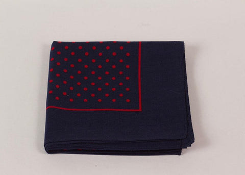 Shopkeeper Spot Bandana | Picasso Red