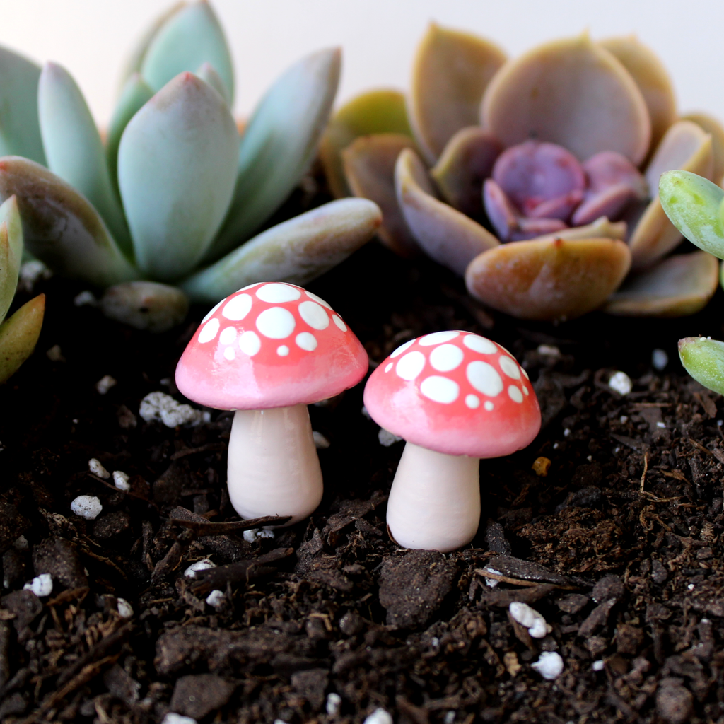 Blush Ombre Mushrooms (Set of 2)