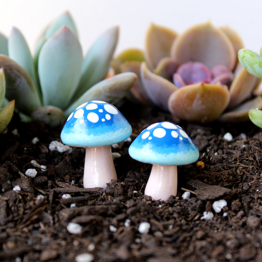 Midnight Ombre Mushroms (Set of 2)
