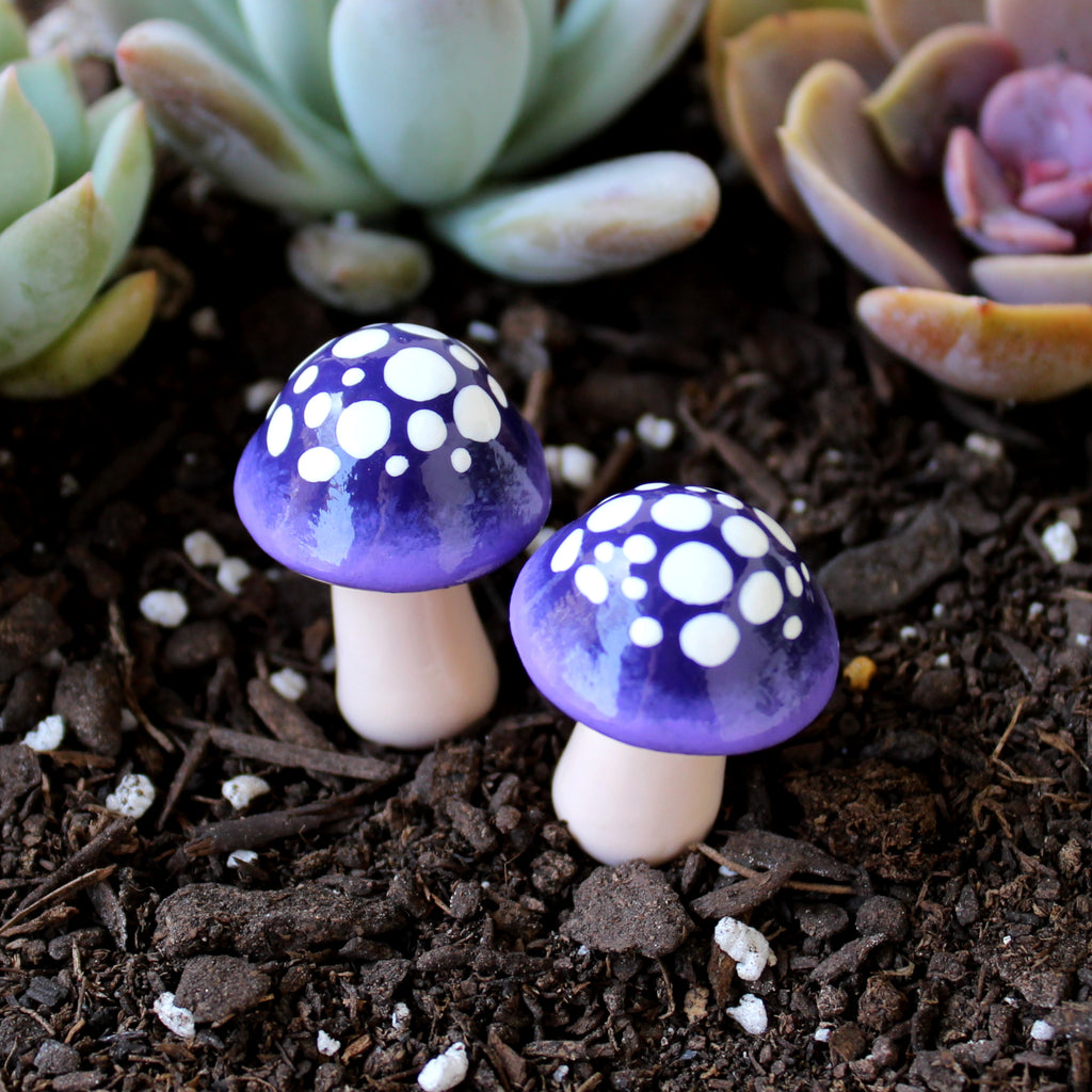 Ultraviolet Ombre Mushrooms (Set of 2)