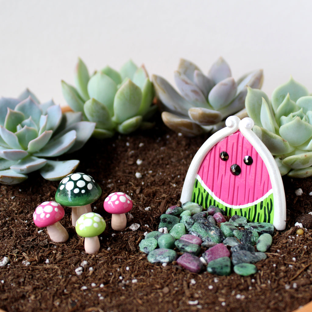 Watermelon Fairy Garden Kit