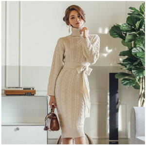 Turtleneck Slim Sweater Dress - Two Colors Available