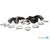 MMR PERFORMANCE CHARGE PIPE KIT N20 TURBO 2012-2016 - MMR Performance