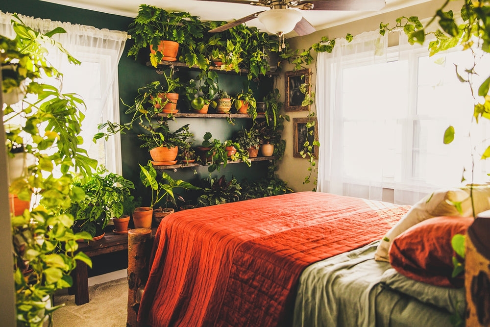 Plant Studio Room | Indoor Jungle Inspiration