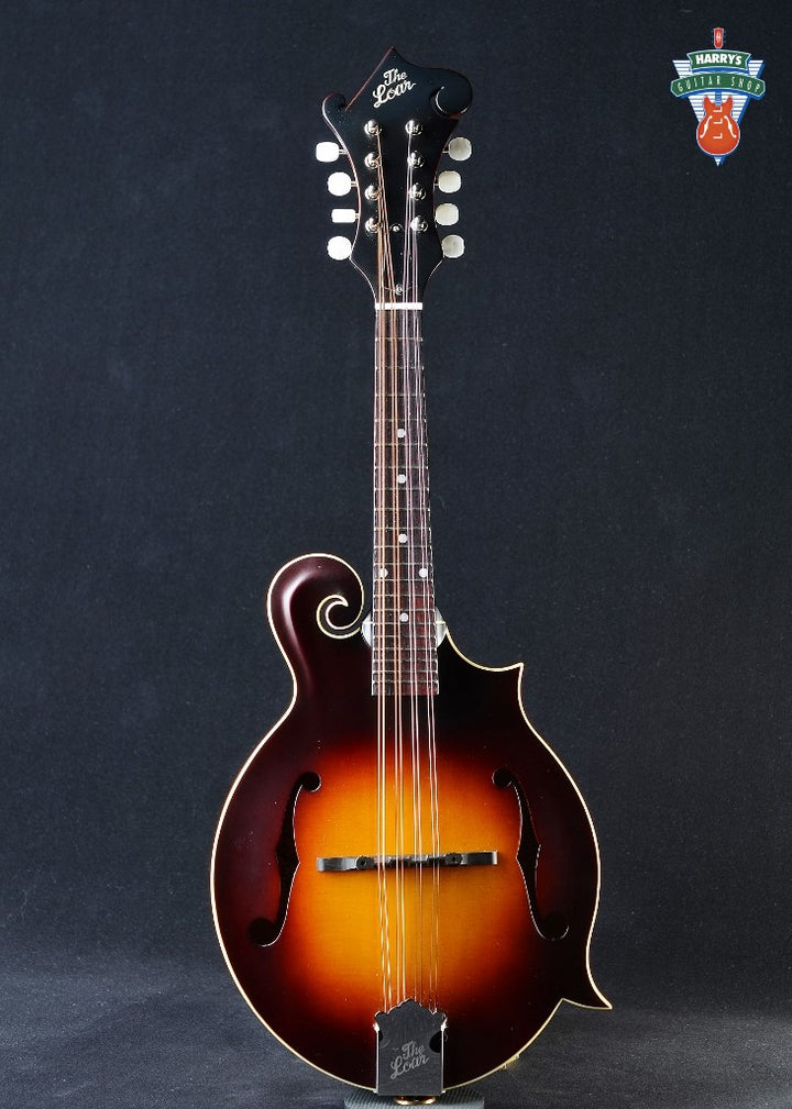 The Loar Contemporary Series LM-590-MS