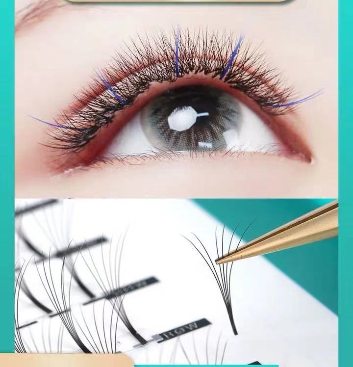 Amanda Beauty Fan Shaped Eyelashes 6pcs 0.07 D