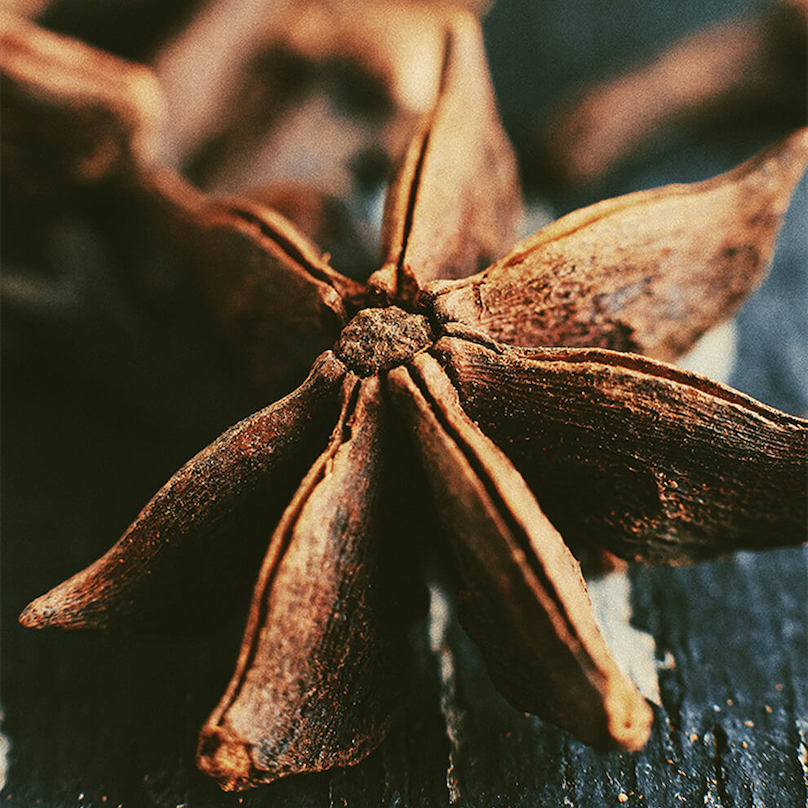 Star Anise pictured as a clove of star anise on a wooden table