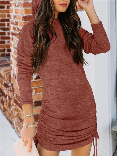 Solid Long Sleeve Hooded Pleated Dress