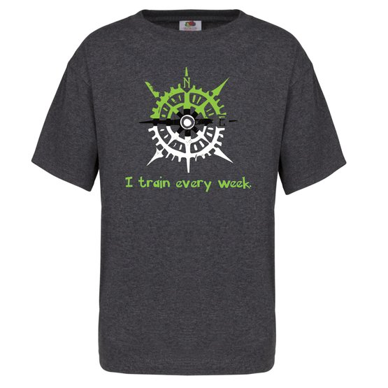 I Train Every Week - Pokeball North tee (Youth, Grey) | North of Exile Games