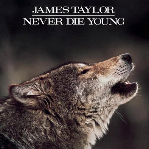 James Taylor Never Die Young - vinyl LP