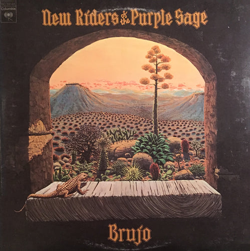 New Riders Of The Purple Sage Brujo - vinyl LP