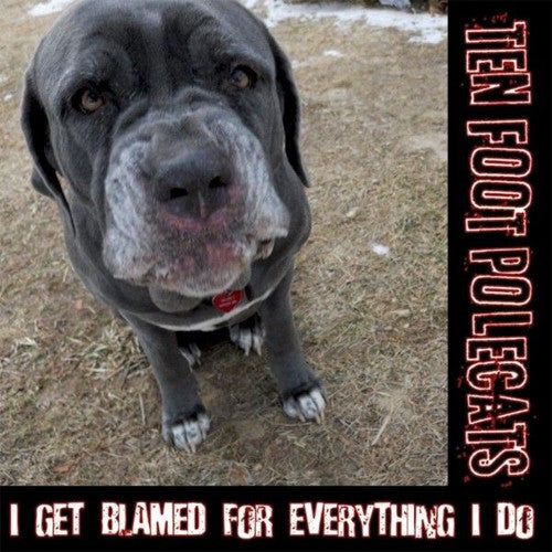 Ten Foot Polecats I Get Blamed For Everything I Do - compact disc