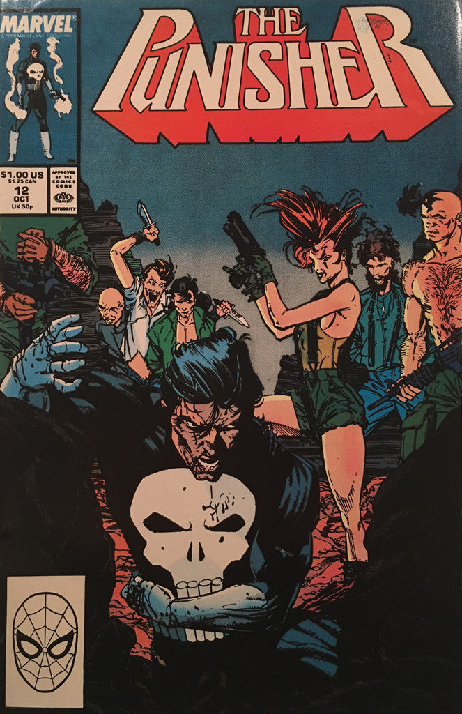 The Punisher #12 - comic book