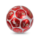 Team Merchandise - EPL Champions Metallic Signature Football