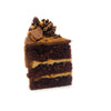 Slice of the Chocolate Peanut Butter Cup Cake