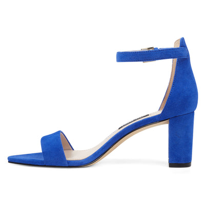 pruce-ankle-strap-block-heel-sandals-in-blue-suede