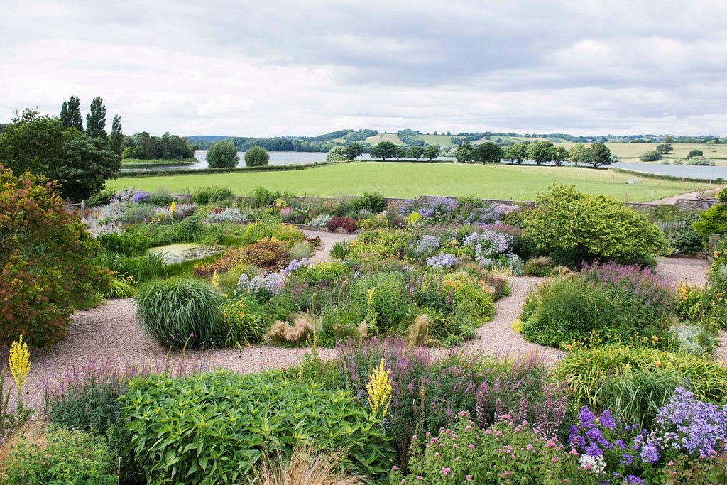 Coco & Wolf guide to Bruton, featuring Yeo Valley Organic Garden