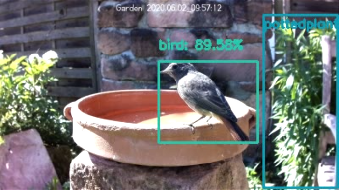 How to use AI to remotely control a Raspberry PI camera