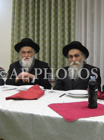 R'Meir Soloveitchik with R'Dovid Soloveitchik