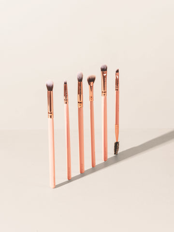 The Coral 2.0 (6 pcs Eye Brush Set)