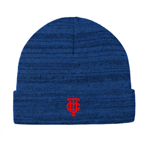 OG Heather Blue Beanie