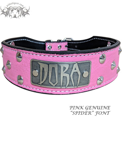 "N5 - 2"" Name Plate Tapered Dog Collar w/Studs"