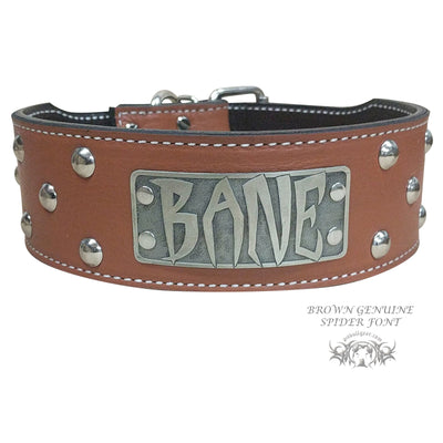 "NJ3 - 2 1/2"" Name Plate Studded Dog Collar"