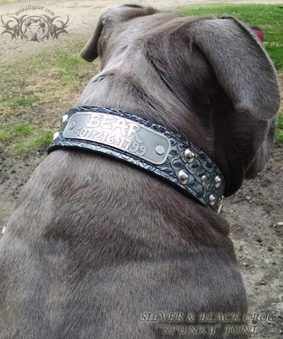 "N10 - Name Plate 1 1/2"" Studded Leather Dog Collar - 1"