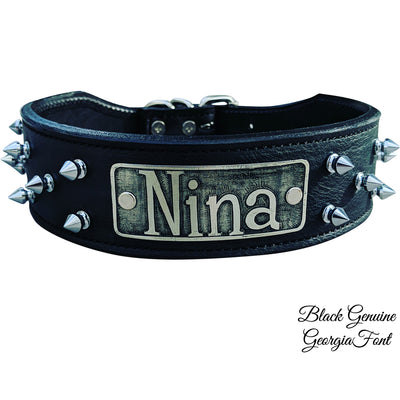 "N6 - 2"" Name Plate Tapered Dog Collar w/Spikes"