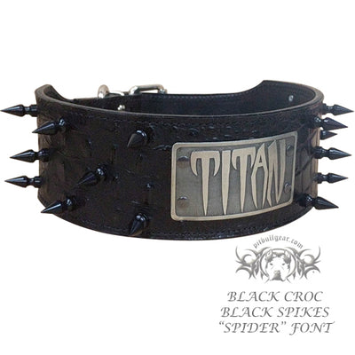 "NJ5 - 2 1/2"" Name Plate Spiked Collar"