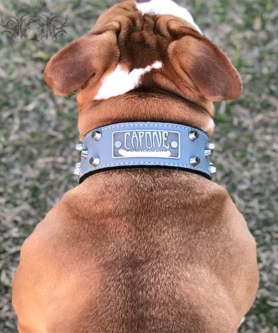 "TW32 - 2"" Tapered Name Plate Leather Collar w/Bucket Studs"