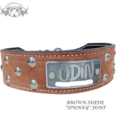 "TWN23 - 2"" Tapered Leather Name Plate Dome Studded Collar"