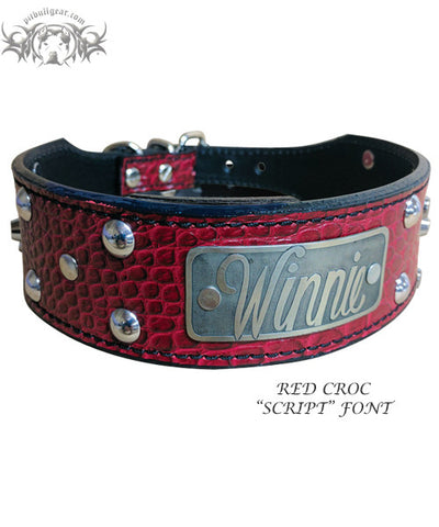 "TW12 - 2"" Name Plate Tapered Dog Collar w/Studs"