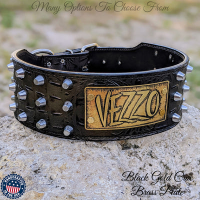 "XN1 - 3"" Name Plate Collar with Bucket Studs"