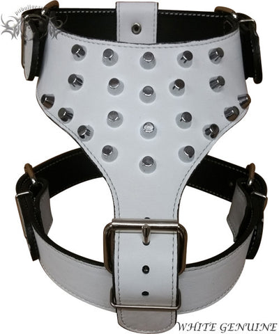 Y19 - Bucket Studded Leather Dog Harness