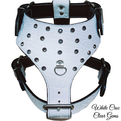 Y24 - Leather Dog Harness with Gems
