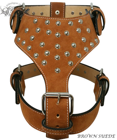 Y20 - Studded Leather Dog Harness - 9
