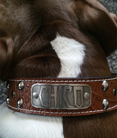 "N12 - 2"" Name Plate Studded Leather Dog Collar - 10"