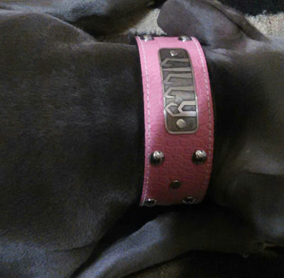 "N12 - 2"" Name Plate Studded Leather Dog Collar - 12"