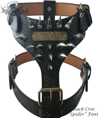 NH7 - NAME PLATE CLAW SPIKED HARNESS - 2
