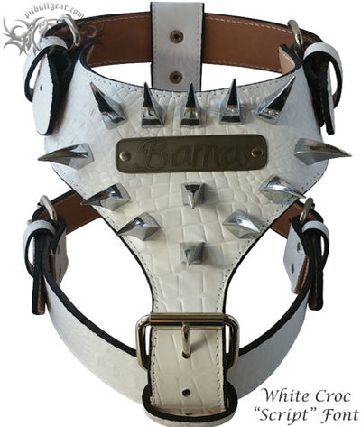 NH7 - NAME PLATE CLAW SPIKED HARNESS - 3