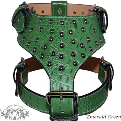 Y20 - Studded Leather Dog Harness - 8