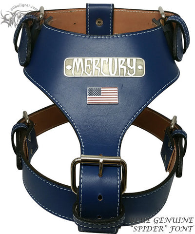 NH76 - NAME PLATE USA LEATHER HARNESS - 1