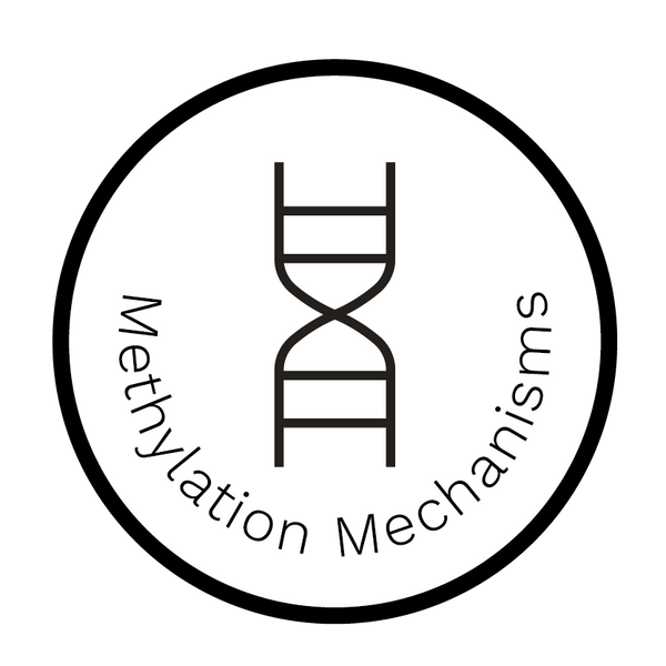 Methylation Mechanisms Report - Dante Labs