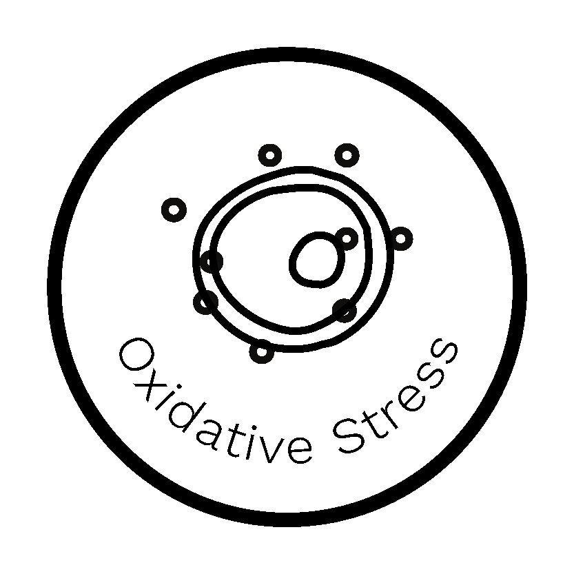 Oxidative Stress Report - Dante Labs