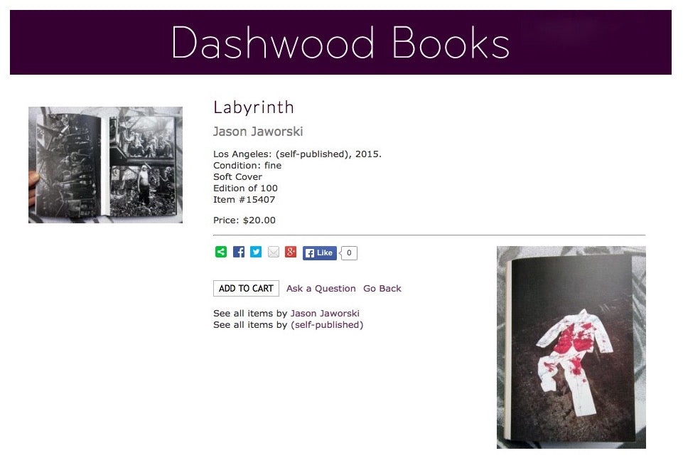 Jason Jaworski Labyrinth Photobook Zine Dashwood Books