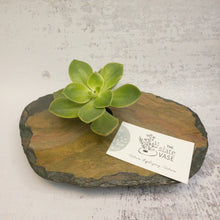 Load image into Gallery viewer, small slate vase colourful stone with business card and succulent