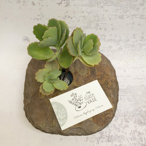 mall slate vase square shape with succulent